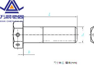 六角头头部带孔螺栓 GB /T 32.1 - 2020